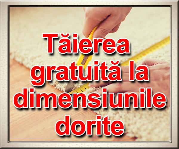 taierea_gratuita.png