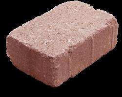 Dale rectangulare 21 x 14 cm