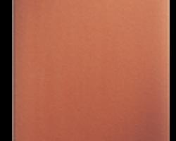 Arc turtit 1