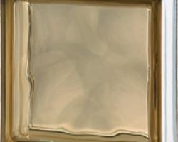 Brown 1919/8 - Transparent