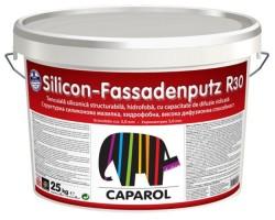 Silicon Fassadenputz tencuiala decorativa siliconica